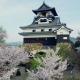 """国宝 犬山城 2016 """"犬山城の歴史的文化を現代の技術で記録し広く世界に発信するプロジェクト"""""""